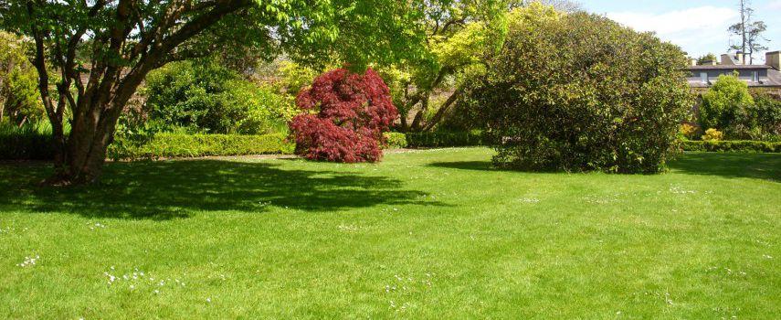 Aseja asociacion espa ola de empresas de parques y jardines for Jardines grandes
